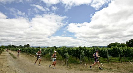 Vineman 70.3: A wine country classic