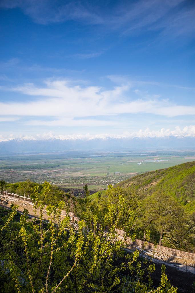 Vineyards and Gardens at Bobde Monastery