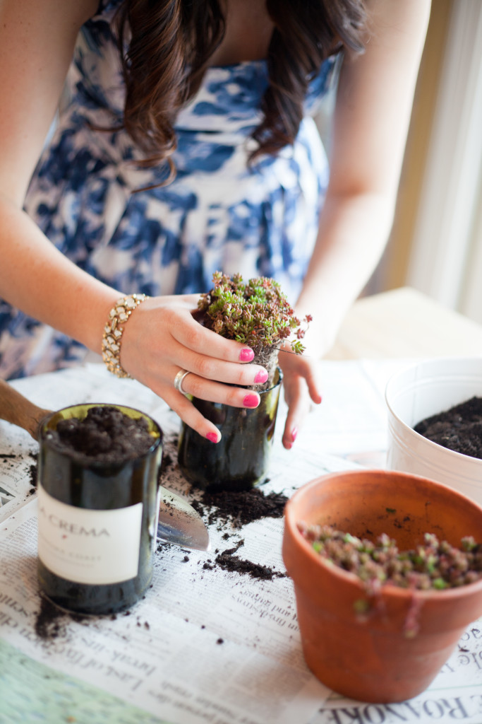 DIY Wine Bottle Succulent Planter
