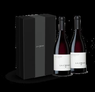 Pinot Noir Enthusiast