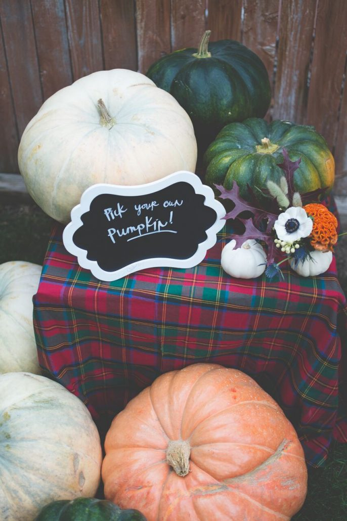 Create an area for guests to pick their own pumpkin if they aren't bringing their own | Pumpkin Carving Party