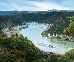 Rhine River Wine Cruise